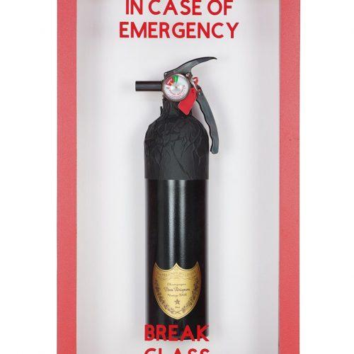 PJ Fire ext DP MED 001